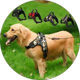 Dog Pet Harness Collar Adjustable