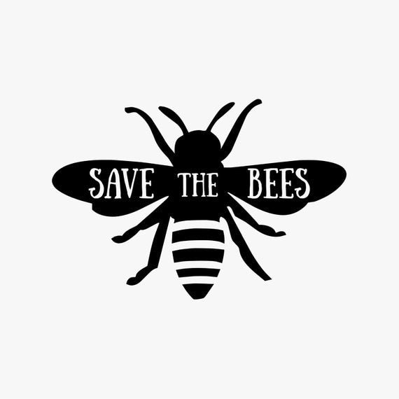 Black and White Save the Bees Pin