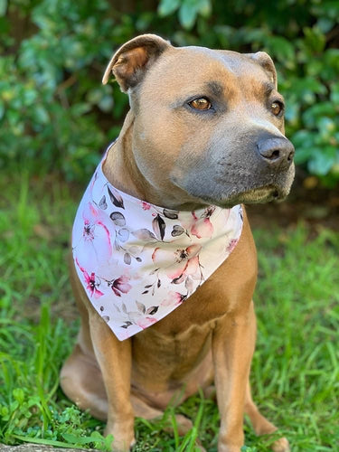 Wild flower Reversible Snap Bandana