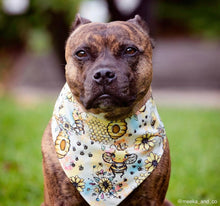 Load image into Gallery viewer, Our new 'Bee Happy' Reversible Snap bandana (Made to order)