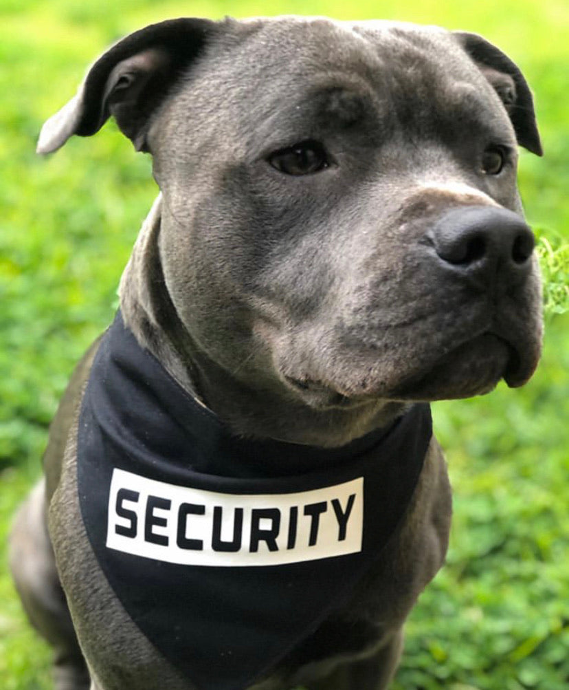 Security Snap bandana (Made to order)