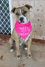 Load image into Gallery viewer, Sweet Treats Pink Reversible Snap Bandana