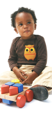 Autumn Owl on Brown Applique Tee or Onesie