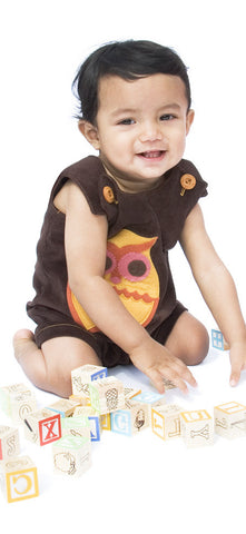 Brown Overalls or Romper with Autumn Owl Felt Applique