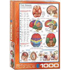 EuroGraphics Human Body (The Brain) 1000 Piece Puzzle