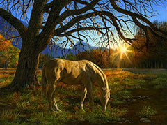Pastoral Sunset 1000 pc Jigsaw Puzzle