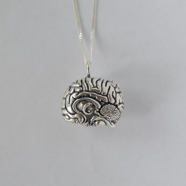 Anatomical brain locket