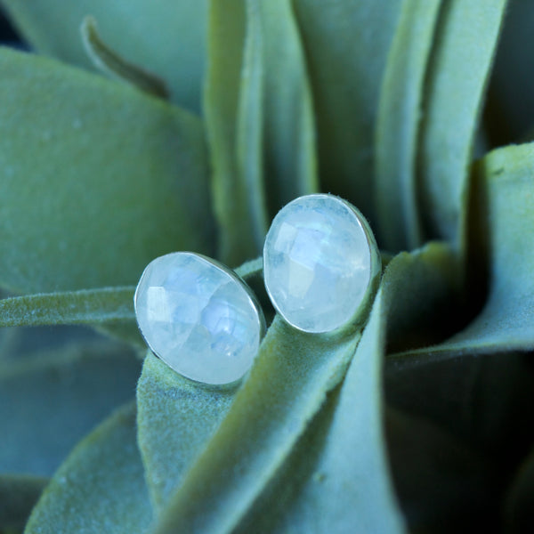 Oval Statement Studs in Moonstone