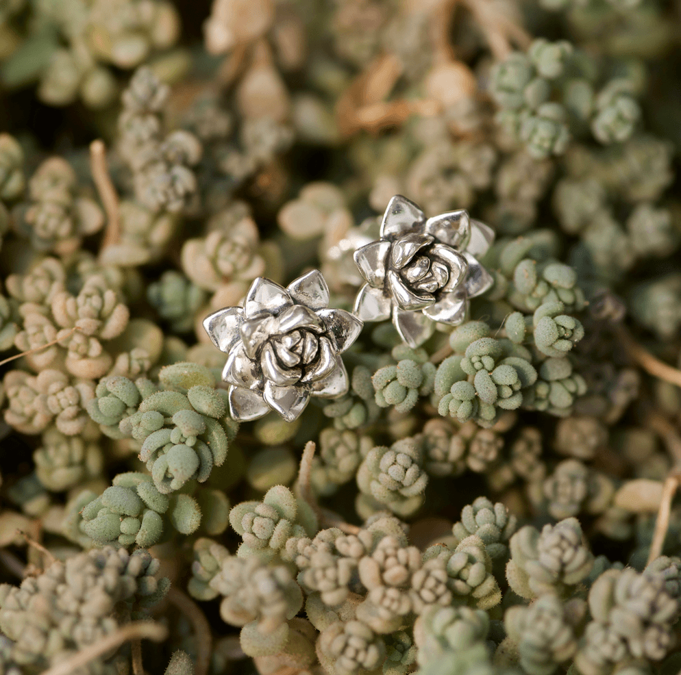 Succulent Stud Earrings