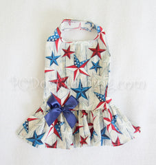 American Stars Dress (Only XXS Available)