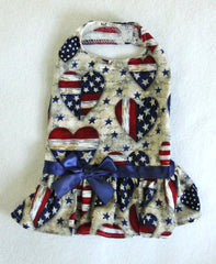 Americana Dress (Clearance - Only size Large)
