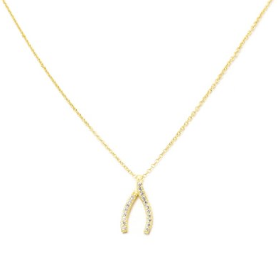 Dazzle Wishbone Necklace- Sterling Silver