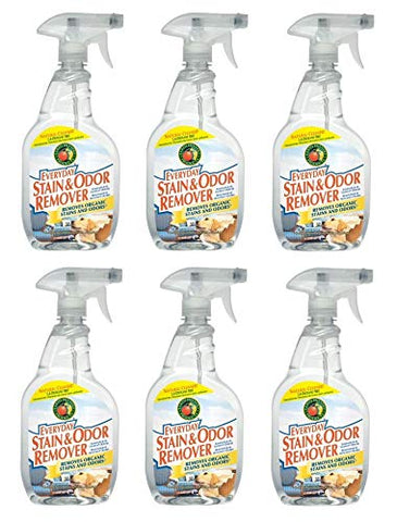 Earth Friendly Products Everyday Stain And Odor Remover Spray, 22 Oz
