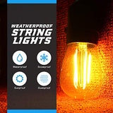 Bluex Amber Bug String Lights Outdoor  Vintage Edison Filament Led Bug Light Bulbs - 48Ft - 15 Hanging Led Amber Bug Free Light Bulbs - Heavy Duty Waterproof Commercial Grade, Patio, Porch, Caf