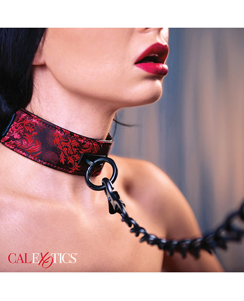 Scandal Collar w/Leash