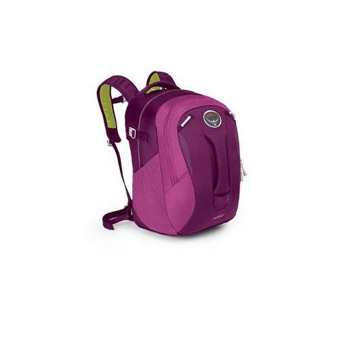 Mochila Backpack Pogo 24 Lts Purpura Talla U Osprey Packs