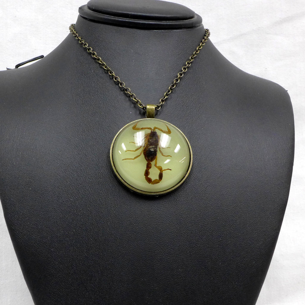 Brown Scorpion Glow in Dark Dome Necklace