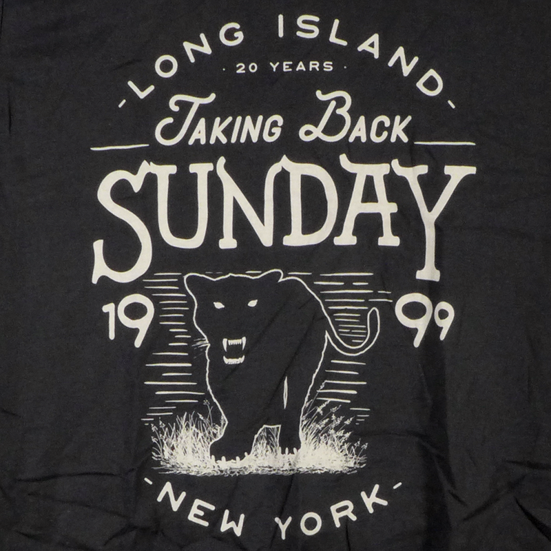 Taking Back Sunday Panther