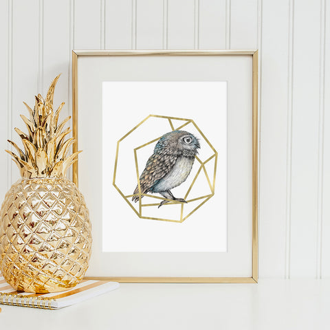The Gilded Cage Owl