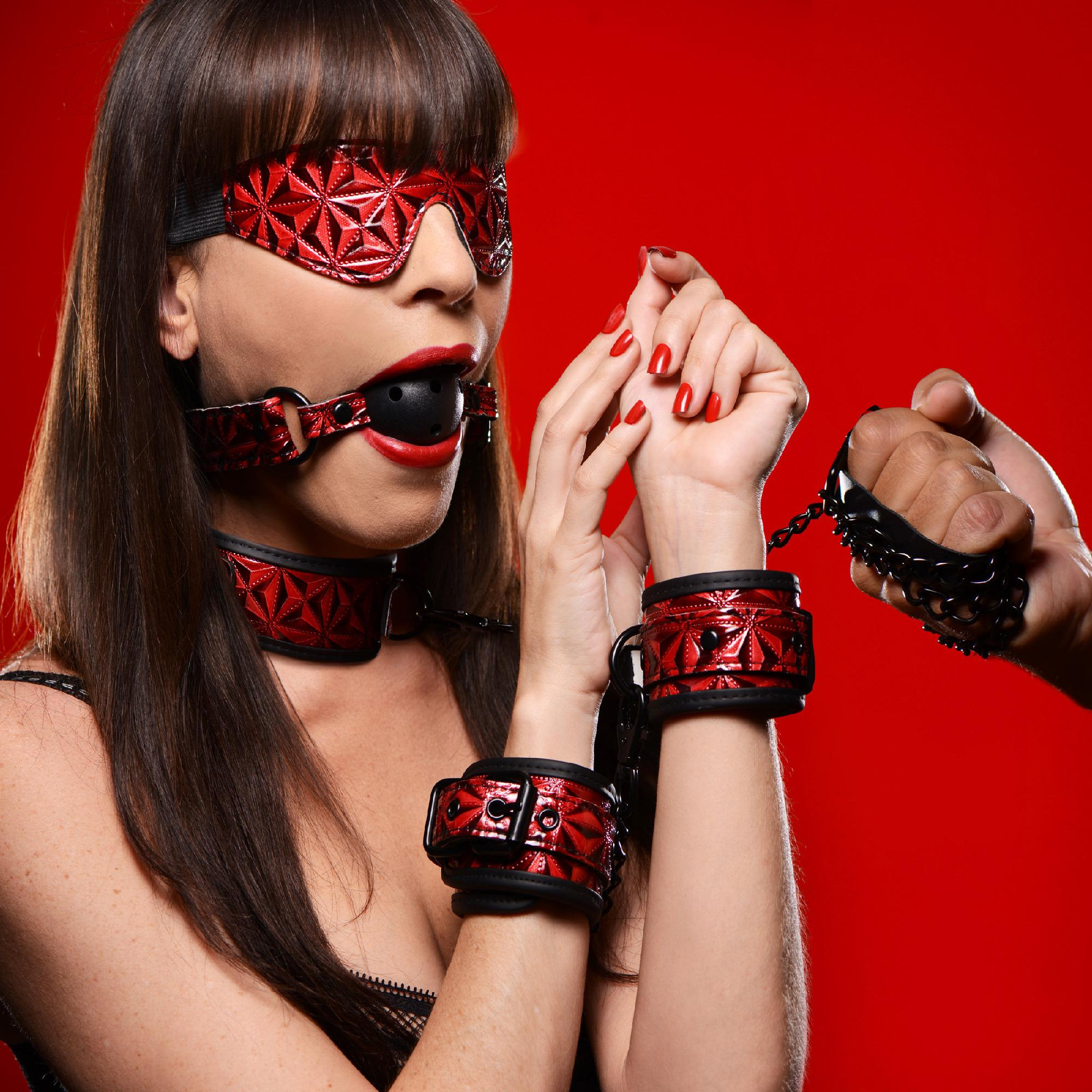 Crimson Tied Ultimate Bondage Kit