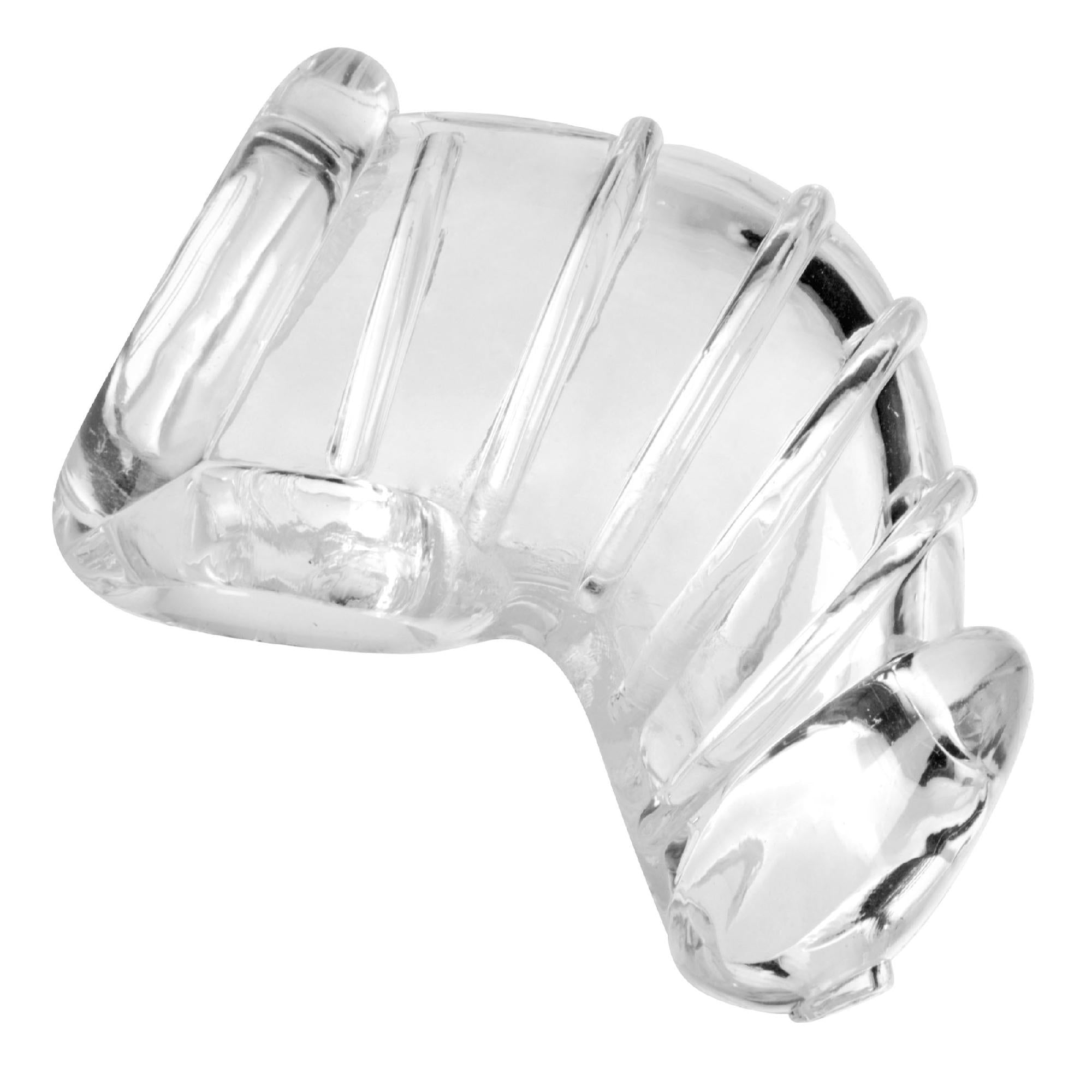 Detained Soft Body Chastity Cage