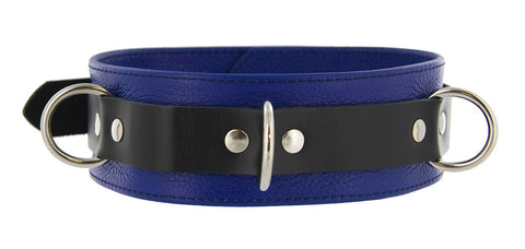 Strict Leather Deluxe Locking Collar - Blue and Black