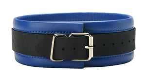 Blue Mid-Level Leather Collar