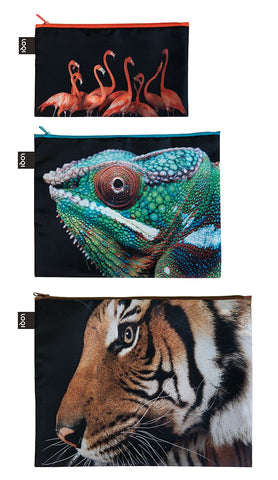 NATIONAL GEOGRAPHIC<br>Zip Pockets<br>Tiger,Chameleon,Flamingo<br>PHOTO ARK ™ and © Joel Sartore, © 2020 National Geographic Partners, LLC.<br>ZP.NG.TF