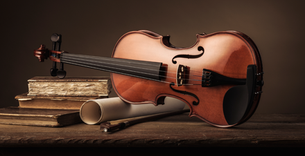 12 Best Places to Buy Violins in North Carolina - Oviolin