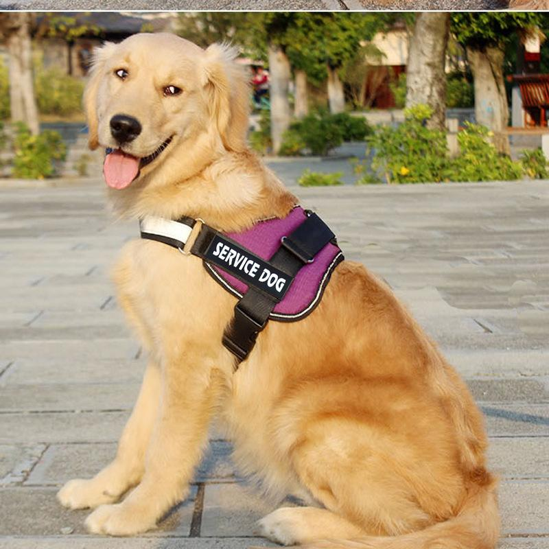 Dog Vest Harness with Removable Patches and Reflective Trim