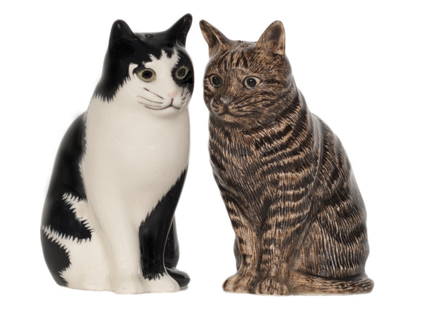 Cats Salt And Pepper Pots: Barney & Clementine