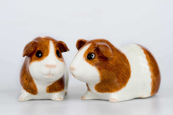 Guinea Pig Salt And Pepper Pots: Dutch