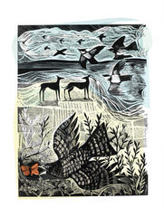 Angela Harding - Nightjar And Sea
