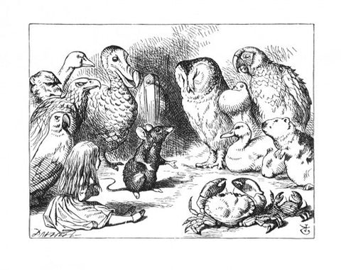 Sir John Tenniel for Lewis Carroll - 'They were indeed a queer-looking party that assembled on the bank...'