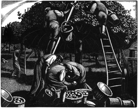 Clare Leighton - A Farmer's Year: September - Apple Picking