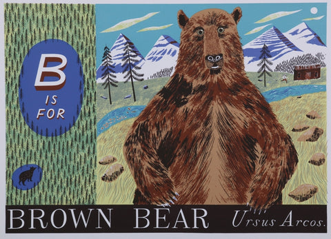 Emily Sutton - B is for Brown Bear