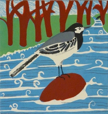 Kittie Jones - Pied Wagtail