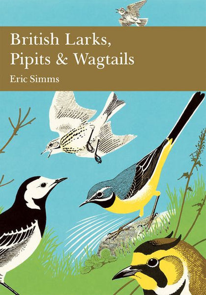 New Naturalist 78: British Larks, Pipits And Wagtails by Eric Simms