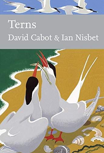 New Naturalist 123: Terns by David Cabot & Ian Nisbet