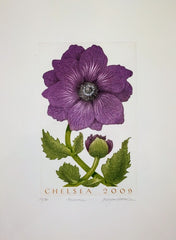 Bryan Poole - Anemone, Chelsea, 2009 by Bryan Poole