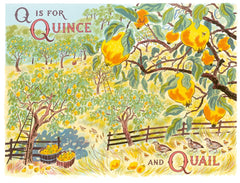 Emily Sutton - Q is for Quince and Quail