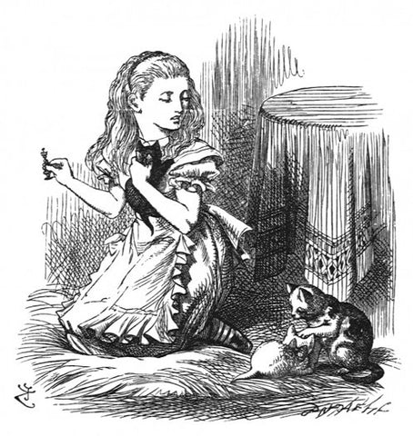 Sir John Tenniel for Lewis Carroll - 'Snowdrop, my pet!', she went on...'