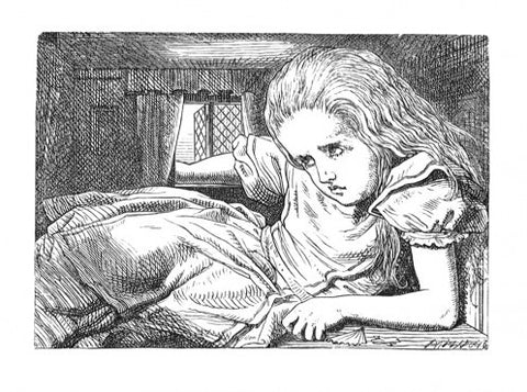 Sir John Tenniel for Lewis Carroll - 'Still she went on growing...'