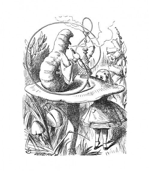 'The Caterpillar and Alice looked at each other for some time in silence...'