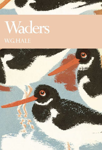 W G HALE - New Naturalist 65: Waders by W G Hale