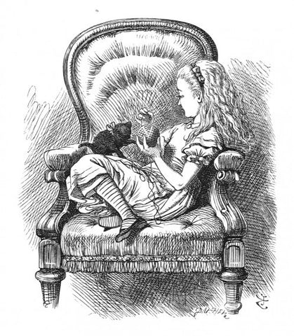 Sir John Tenniel for Lewis Carroll - 'What have you got to say for yourself? Now don't interrupt me!''