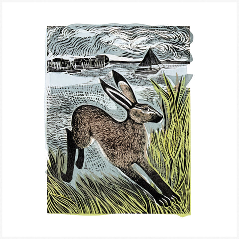Angela Harding - Young Hare