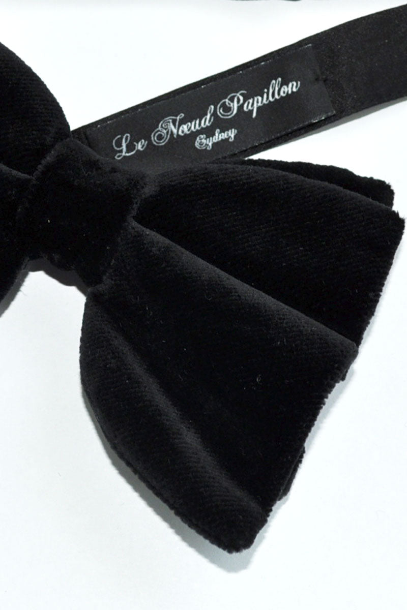 Black Bow Holland & Sherry Velvet