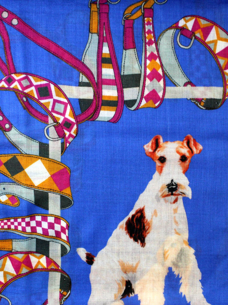Kiton  Scarf Royal Blue Fuchsia Dogs Design SALE