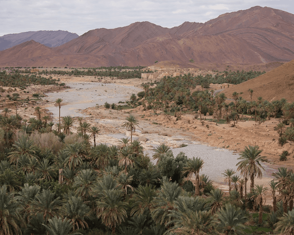 Secrets of the South: A Week in the Moroccan Sahara Desert